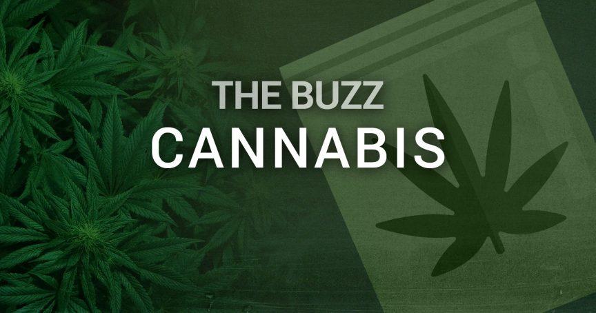 Cannabis Topics and News