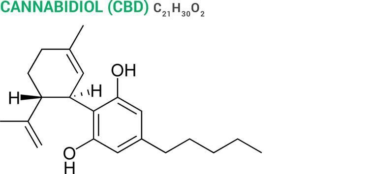 Capsaicin molecular structure