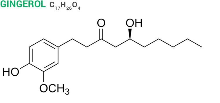 Gingerol molecular structure