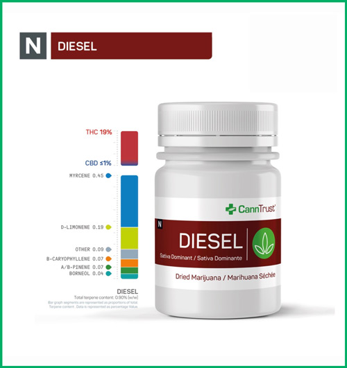Diesel by CannTrust