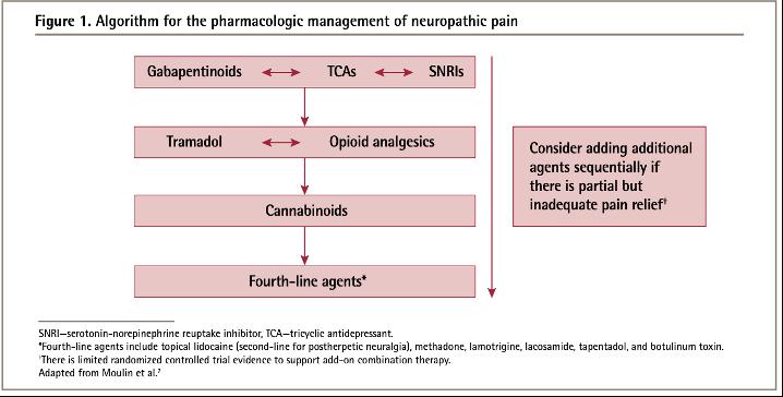 algorith for neuropathic pain